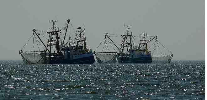 Pesqueros chinos en las Galápagos aumenta tensión con Ecuador y EEUU