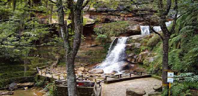 Parque Zoológico Chorros de Milla abrirá sus puertas este fin de semana