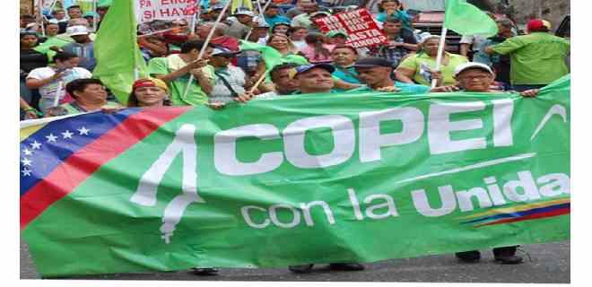 """Copei-Mérida responsabiliza a """"abstencionistas"""" por resultados de  Parlamentarias del 6-D"""