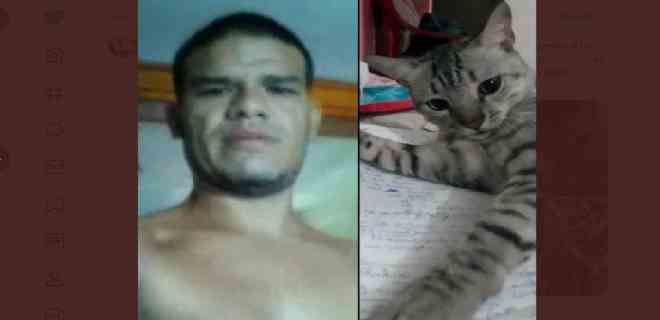"""En Margarita, hombre mató, despellejó y luego se comió a """"Paquito"""", el gato de su vecino"""