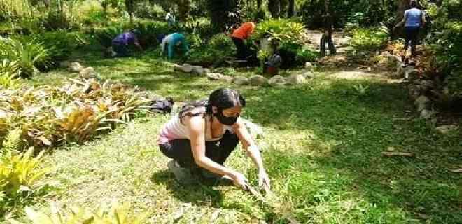 Voluntarios recuperan áreas del Jardín Botánico de Mérida