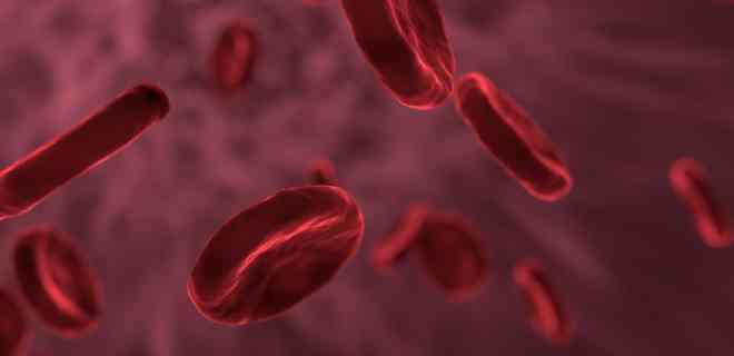 Sangre tipo O podría ofrecer cierta protección contra el covid-19
